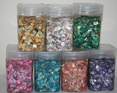 350g Sea shells Beach Craft Table Decor Aquarium Fish Tank