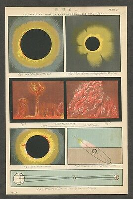 c1885 Antique Astronomy Print of the Sun - Eclipse - Solar Flares