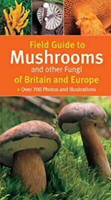 Field Guide To Mushrooms And Other Fungi Of Bri... by Michael Eppinger Paperback