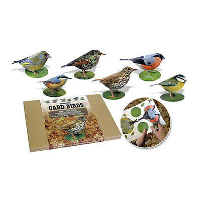 Garden Birds Kit Two Card Kit Nature Wildlife Craft Educational Gift