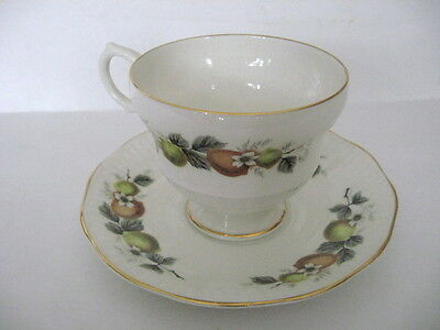 Vintage Rosina Fine Bone China Teacup & Saucer Set Made In England