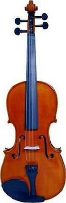 New Dipalo Deluxe 4/4 Size Violin Package With Case, Bow, Rosin + Spare Strings