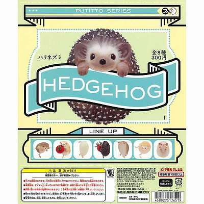 Kitan Club PUTITTO Series Hedgehog Cute Animal Cup edge Completed Set 8pcs