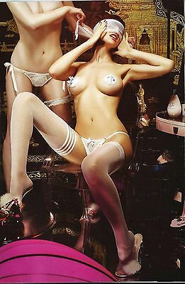 Agent Provocateur Wedding Set Blindfold,trixie, Pasties White One Size Bnwt