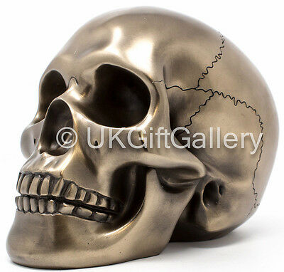 Skull Ornament Decorative Human Head Bronze Sculpture Ornament Veronese Studio