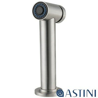 Astini Orso Brushed Stainless Steel Kitchen Tap Pullout Side Spray & Hose HK83