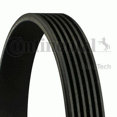 TO CLEAR - NEW CONTITECH - 6 RIB 2050 mm - V-RIBBED BELT - 6PK2050