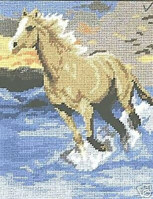 Galloping Horse Tapestry Needlepoint Canvas DMC