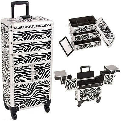 Pro Aluminum Rolling Makeup Case Cosmetic Organizer Storage Sunrise Trolley 4n1