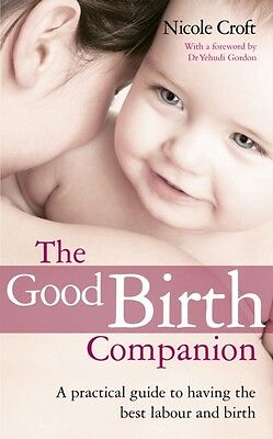 The Good Birth Companion: A Practical Guide to Having the Best Labour and Birth.