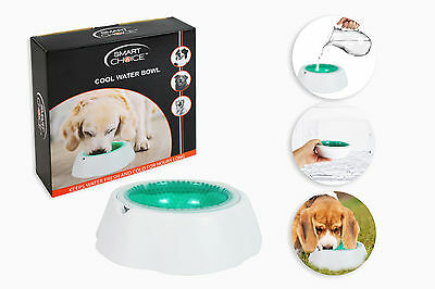 Water Bowl Cool Pet Dog Cold Water 450ml Fresh Animal Chill Anti Slip