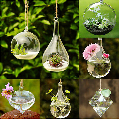 Lovely Flower Vase Planter Terrarium Clear Container Glass Hanging Home Decor