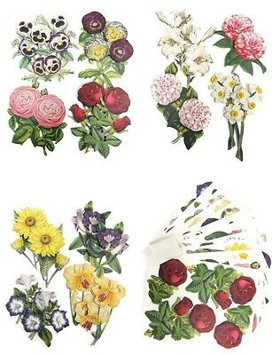24 Anna Griffin SMALL 3D Decoupage BOTANICAL FLOWERS Die Cuts Embellishments