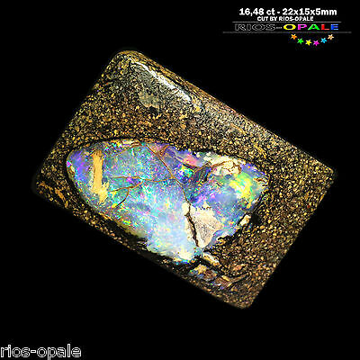 YOWAH OPALISIERTES HOLZ Boulder Opal - 16,48 ct - MIT VIDEO - OHNE BOHRUNG