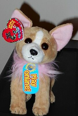 CT* Ty Beanie Baby BB 2.0 ~ PICO the Chihuahua Dog ~ MINT with CREASED TAG