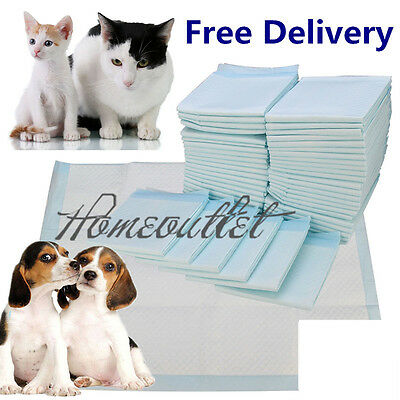 200 60X45Cm Large Puppy Training Trainer Pads Toilet Pee Wee Mats Pet Dog Cat Hm