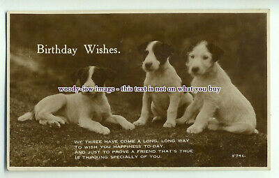 an0180 -  Early Card, Birthday Wishes, Three Pups sat down, and Poem - postcard
