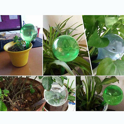 Self Watering Device Automatic Waterer-Houseplant-Plant Home Garden Pot Bulb 1pc