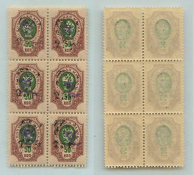 Armenia, 1920, SC 206, MNH, block of 6. f821