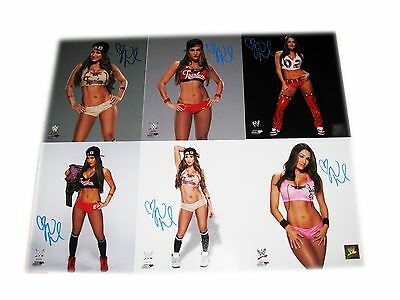 Wwe Nikki Bella Hand Signed Autographed Lot Of 6 Photo File Photos With Coa