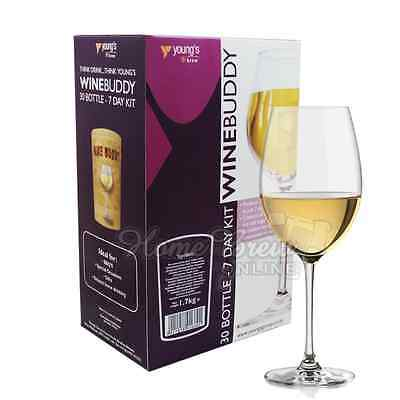 WINEBUDDY Home Brew White Wine Kit Refill Youngs 30 Bottle 7 Day - PINOT GRIGIO