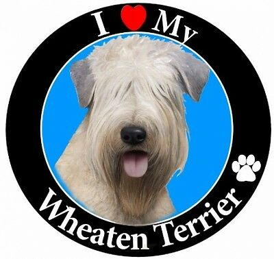 E and S Pets Car Magnet, Soft Coated Wheaten Terrier