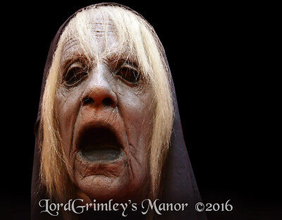 The Wraith Ghost Spectre Wicked Witch Horror Movie Halloween Mask Undead Female