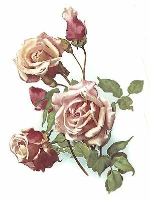 Pink Rose Anna Olivier Spray Select-A-Size Waterslide Ceramic Decals Bx
