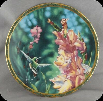 Cyndi Nelson Calliope Hummingbird and Gladioli Collectors Plate