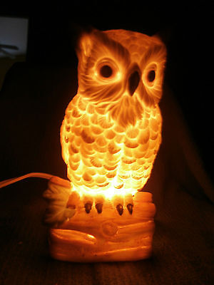Brown Feather Owl Night Light Lamp