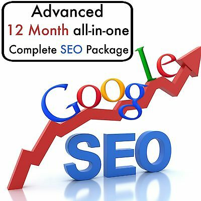 ADVANCED STRATEGIC PLAN 12 Month Complete All In One SEO & SEM PACKAGE Google #1