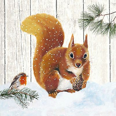 "CHRISTMAS SQUIRREL ROBIN BROWN 3-PLY 20 PAPER NAPKINS SERVIETTES 13""x13""-33X33CM"