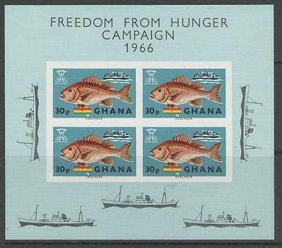 Ghana Sgms425 1966 Freedom From Hunger Mnh