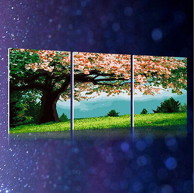 """16x20"""" DIY Home Decor Acrylic Paint By Number Kit Three Parts Flowers Tree 555"""