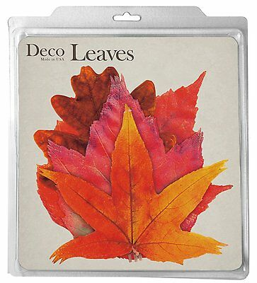 Harold 7102 Deco Fall Leaves Food Safe Parchment Plate Table Decorations 20-Pack