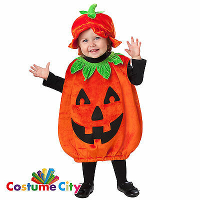Babys Toddlers Pumpkin Patch Cutie Halloween Fancy Dress Party Costume