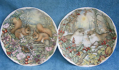 2 ROYAL ALBERT Countryside Friends DISPLAY PLATES no.3 squirrels, no.4 Otters