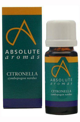 Absolute Aromas Pure Citronella Essential Oil 10ml Natural and Undiluted