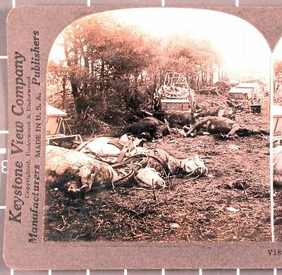 WWI Stereoview card:  Supply Train Bombed by German Airplanes