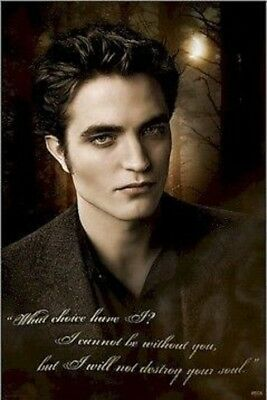 TWILIGHT NEW MOON ~ EDWARD ~ WHAT CHOICE? ~ 24x36 MOVIE POSTER Robert Pattinson