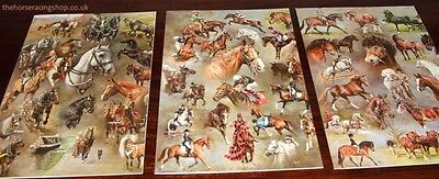 12 Lovely Horse Breeds Working Sports Racing Christmas Cards Pack BHS Charity