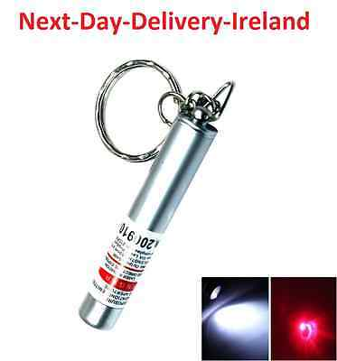 2in1 Laser Pointer and LED Torch Keyring Keychain -1mW Cat Dog Toy PowerPoint