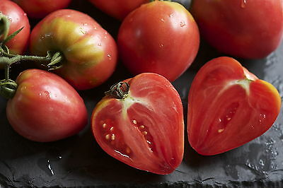 Tomato Red Oxheart Huge Crops Of Large Tasty Heart Shaped Fruit 20 Fresh Seeds