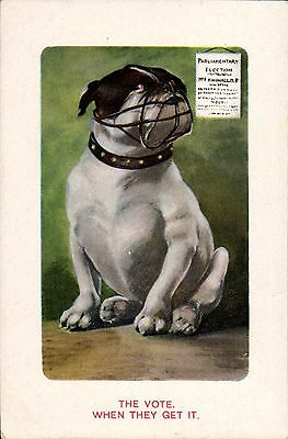 Suffragette Comic. The Vote. When They Get in Misch & Co Series 1626/6. Bulldog.