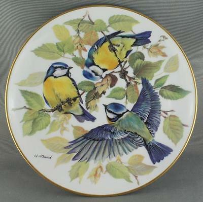 Ursula Band Blaumeise  Blue Tit Collector Plate