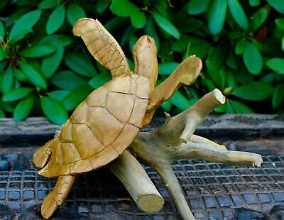 """Sea Turtle Statue Wood Carving Sculpture Natural Root hand carved Bali Art 18"""""""