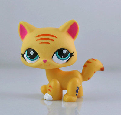 Pet Short hair Cat Child Girl Figure Littlest Toy Loose Xmas LPS848