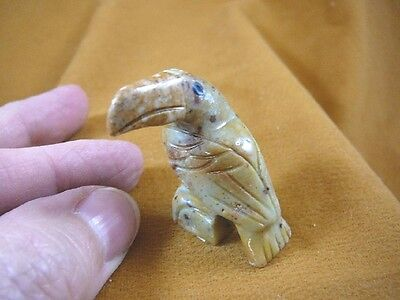 y-bir-to-24) little tan gray Toucan tropical bird soapstone carving love toucans