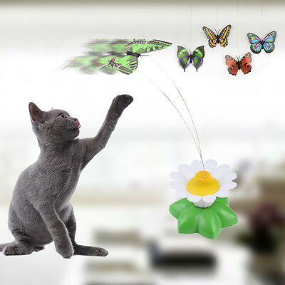 Funny Pet Cat Kitten Supplies 360 degree Rotation Flying Butterfly Electric Toy