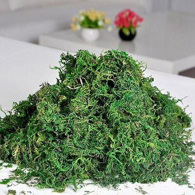 Best Artificial 50g Reindeer Moss Christmas Xmas Decoration Plants Pot Tree